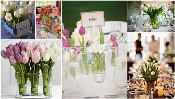 Fun-fun-tulipan - ciekawostki-dekoracyjne - news 9